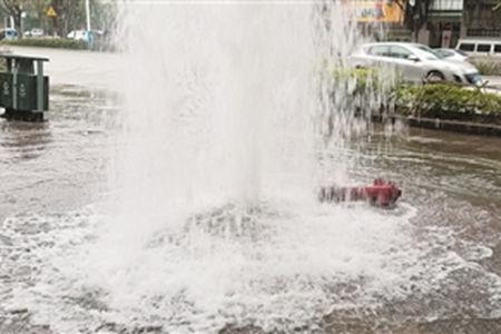 汽车倒车撞断消火栓冲出十多米高的水柱
